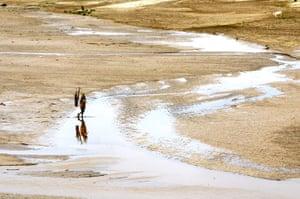 Desertification: UNCCD Photo Contest 2009