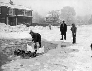 1962 Winter Freeze: Frozen Lake