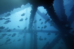 2010 year in environment: USA - Gulf of Mexico - Diving Near Oil Platforms