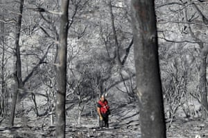 24 hours in pictures: n Israeli firefighter searches for vicitms among burned trees