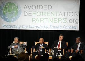 COP16 updates: The Avoided Deforestation Partners' conference in Cancún
