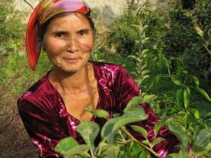 Tajikistan Climate: Omina Askarova, chief of the womens collective farm in Langor Tajikistan