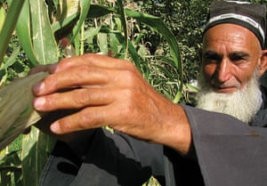 Tajikistan Climate: Turaqulov Saidmuzator, a farmer in Temumalik District Tajikistan