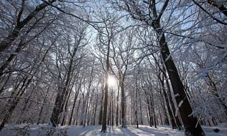 Cold feat: Winter maintains icy grip on UK to the end | UK weather | The  Guardian