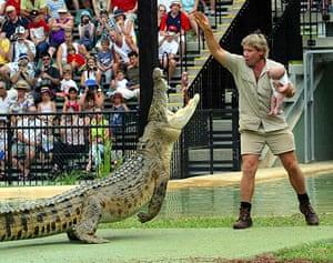 When animals kill: Steve Irwin hand feeding a crocodile with a dead chicken