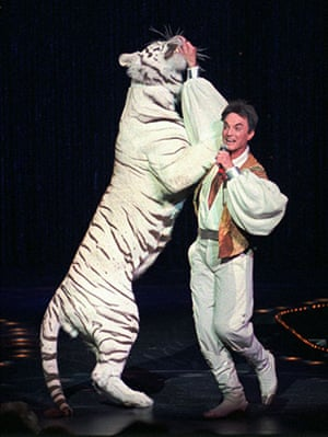 When animals kill: Roy of the world-renowned illusionists Siegfried & Roy