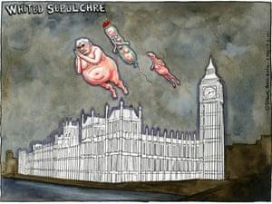 05.02.10 Steve Bell on MP expenses