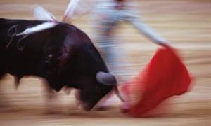A matador and bull