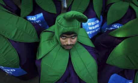 A demonstrator dressed as an aubergine protests against cultivation of India's first GM food crop