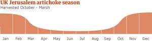 UK Jerusalem artichoke season
