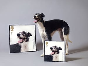 Battersea Dogs Home: Battersea Dogs Home Commemorative Stamps