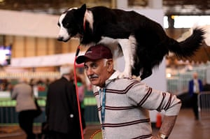 Crufts: A man and his dog practice their routine