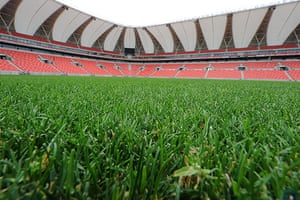 World Cup stadia: The field is pictured at Nelson Mandela