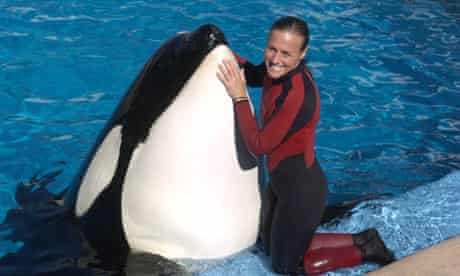 Dawn Brancheau, a trainer at SeaWorld, with a killer whale in 2005.
