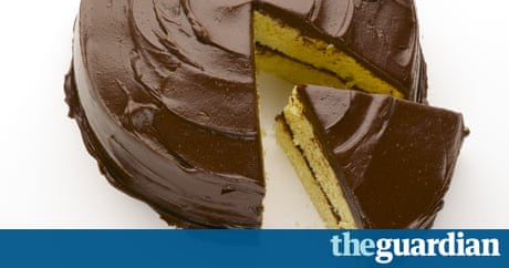Chocolate Sponge Cake Guardian