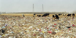 Beijing waste crisis: Xiaotangshan Town, Changping District