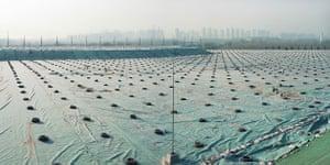 Beijing waste crisis: Gaoantun landfill, Chaoyang District