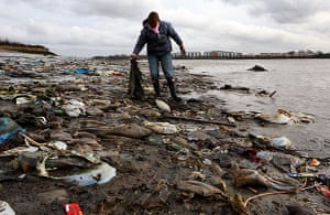 Cleaning the Thames: Debris on the banks of the river