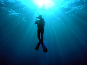 in pictures: hobbies: diver off the Mozambican coast