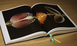 Big Fat Duck Cookbook