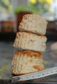How to make the perfect scone life and style the guardian upwards by recipe rachel allen leiths with 00 flour and leiths with self raising flour photograph felicity cloake forumfinder Choice Image