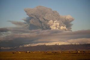 Volcano: Volcano Sasturday