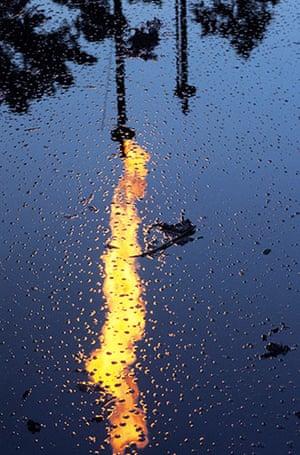 Top 10 Ecocide: toxic dumping by Chevron Texaco in Ecuador