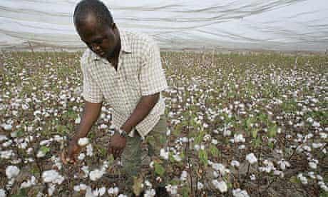 A Burkinabe farming technician of the Na