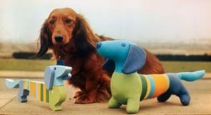 Olympic mascots: 1972 - Munich, Germany olympic mascot Waldi the dog