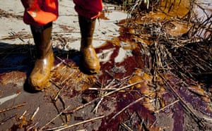 Deepwater Horizon: Oil spill reaches Louisana and Alabama coast