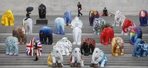 Global animal sculptures: London elephants