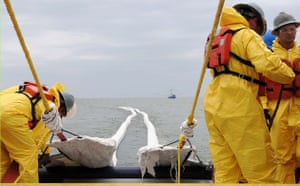 Deepwater Horizon oil rig: Oil spill : fire-resistant oil-containment boom off the coast of Venice