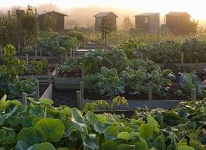 Garden Photographer: 2010 International Garden Photographer of the Year