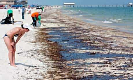 Deepwater Horizon Oil Spill, Gulf Shores, Alabama, America - 12 Jun 2010