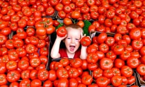 Boy in tomatoes