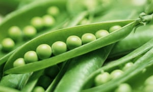 Seasonal food: green peas | Food