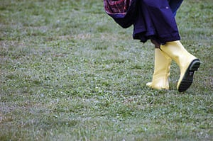 Hay festival: wellies