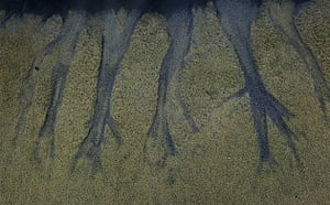 Deepwater Horizon: Streaks left by oil that retreated during low tide