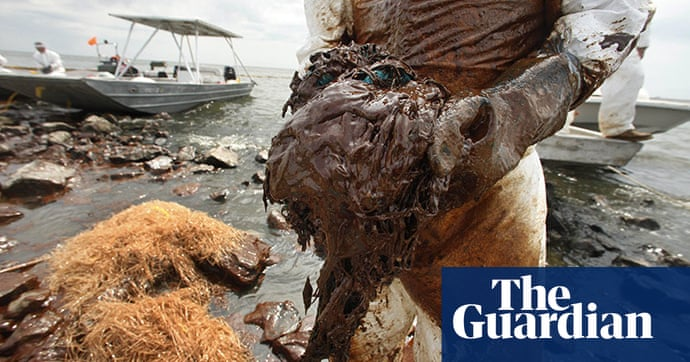 BP oil spill clean-up operations | Environment | The Guardian
