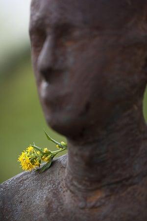 Anthony Gormley: Anthony Gormley's Horizon Field