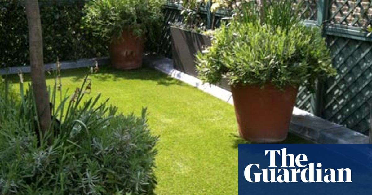 Astro Turf Garden >> Gardens Artificial Grass Life And Style The Guardian