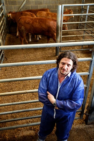 Jay Rayner on On the Hoof: Jay Rayner with the cattle before slaughter at Pennys