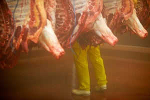 Jay Rayner on On the Hoof: Cattle in the cold storage