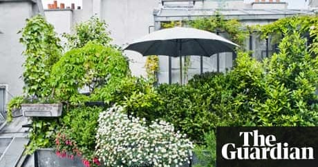 Gardens Roof Gardens Life And Style The Guardian