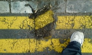 Squashed hedgehog with yellow lines painted on it in Hart Lane in Hartlepool