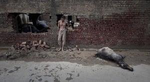 pakistan flooding:  floods in Nowshera Pakistan
