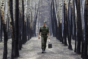 Forest fires in Russia: A soldier walks past birch trees damaged by fire, near Voronezh