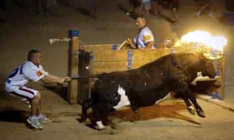 Men participate in a fire bull fiesta in Amposta, near Tarragona