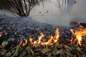 russia update: A forest fire spreads in Nizhny Novgorod region, Russia