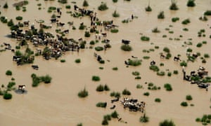 Pakistan aerial: Flooded areas on the outskirts of Dera Ismail Khan
